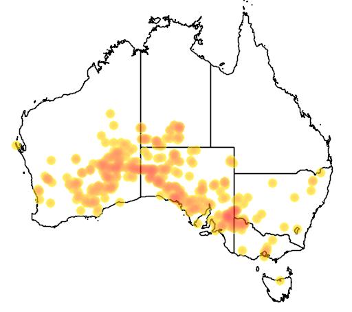 distribution map showing range of Neophema splendida in Australia