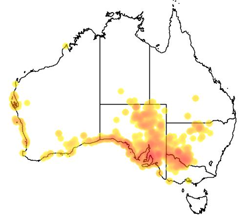 distribution map showing range of Nitraria billardierei in Australia