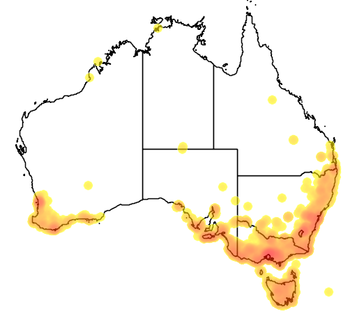 distribution map showing range of Notechis ater in Australia