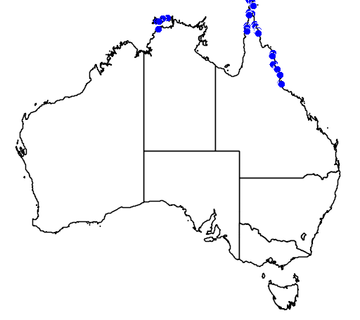 distribution map showing range of Nypa fruticans in Australia