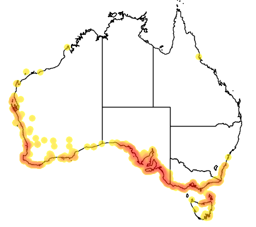 distribution map showing range of Olearia axillaris in Australia