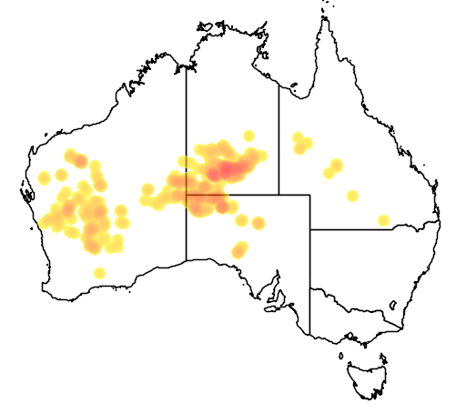 distribution map showing range of Olearia stuartii in Australia