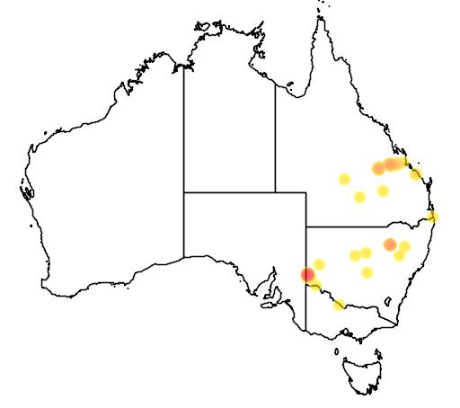distribution map showing range of Onychogalea fraenata in Australia