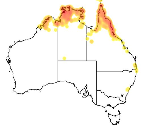 distribution map showing range of Oriolus flavocinctus in Australia