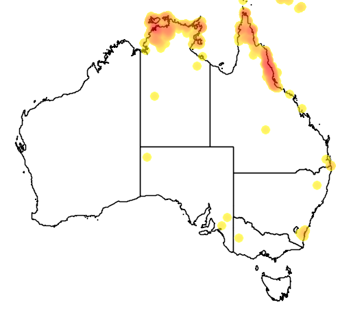 distribution map showing range of Pachycephala simplex in Australia