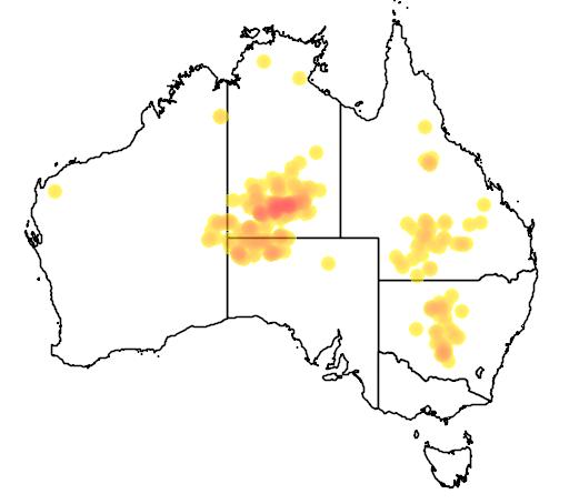 distribution map showing range of Pandorea doratoxylon in Australia