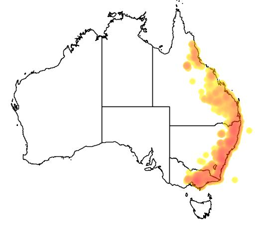 distribution map showing range of Petauroides volans in Australia