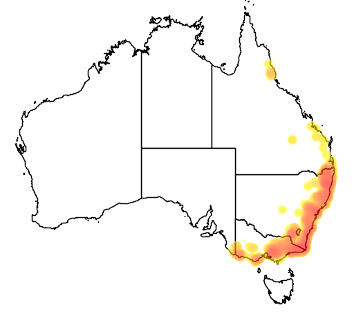 distribution map showing range of Petaurus australis in Australia