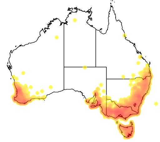 distribution map showing range of Petroica boodang in Australia