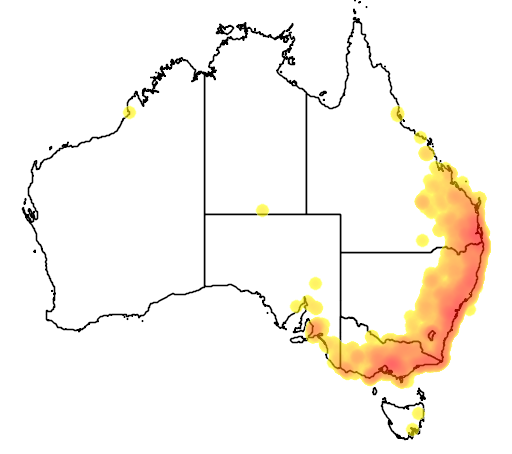 distribution map showing range of Petroica rosea in Australia