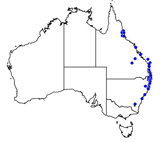 distribution map showing range of Phaius australis in Australia