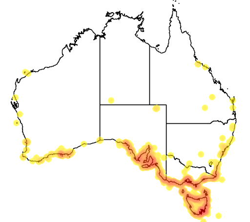 distribution map showing range of Phalacrocorax fuscescens in Australia