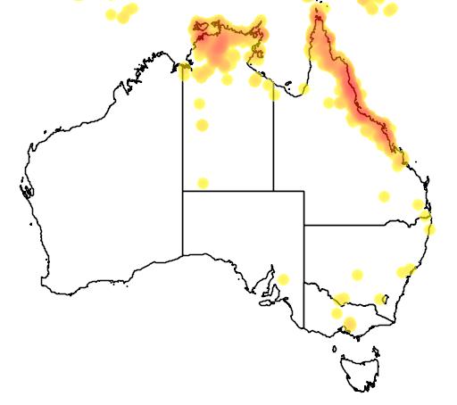 distribution map showing range of Philemon buceroides in Australia