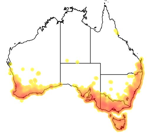 distribution map showing range of Phylidonyris novaehollandiae in Australia