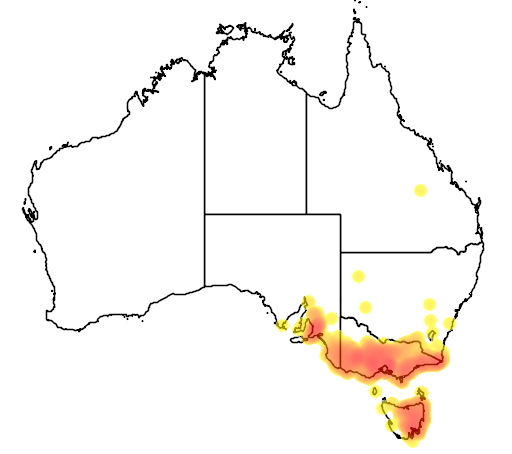 distribution map showing range of Pimelea humilis in Australia