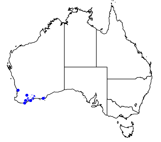 distribution map showing range of Pimelea physodes in Australia