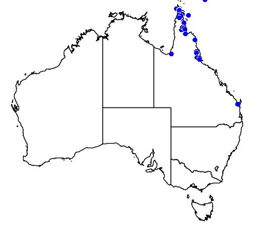distribution map showing range of Pitta erythrogaster in Australia