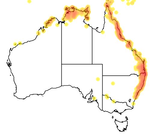 distribution map showing range of Pitta moluccensis in Australia