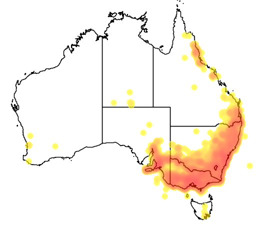 distribution map showing range of Platycercus elegans in Australia