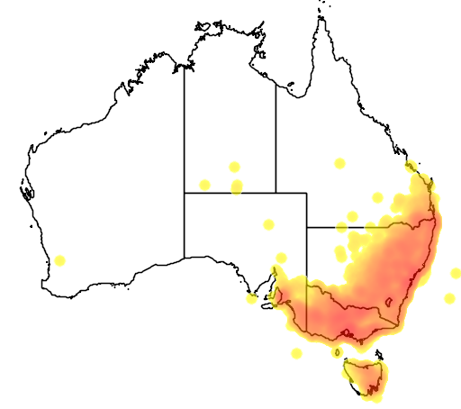 distribution map showing range of Platycercus eximius in Australia