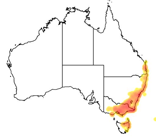 distribution map showing range of Platylobium formosum in Australia