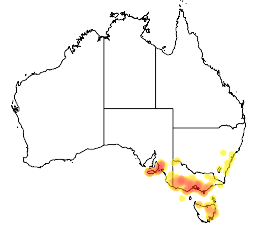 distribution map showing range of Platylobium obtusangulum in Australia