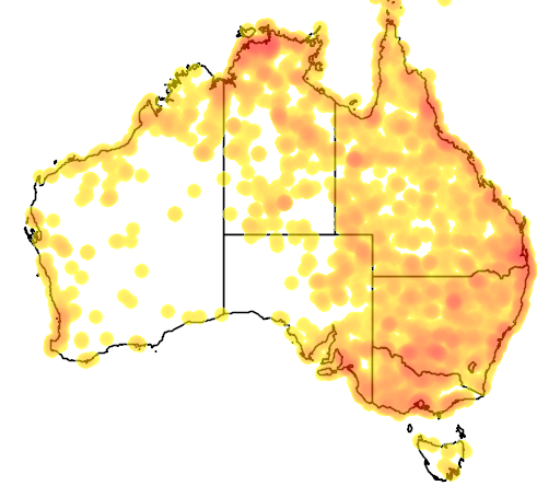 distribution map showing range of Plegadis falcinellus in Australia