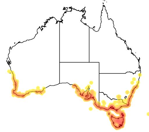 distribution map showing range of Poa poiformis in Australia
