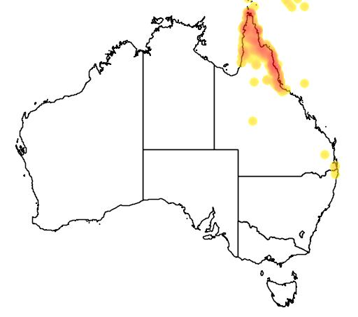 distribution map showing range of Podargus papuensis in Australia