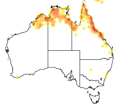 distribution map showing range of Poecilodryas albispecularis in Australia