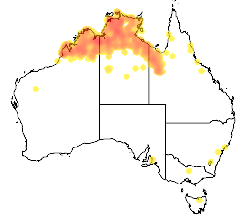 distribution map showing range of Poephila acuticauda in Australia