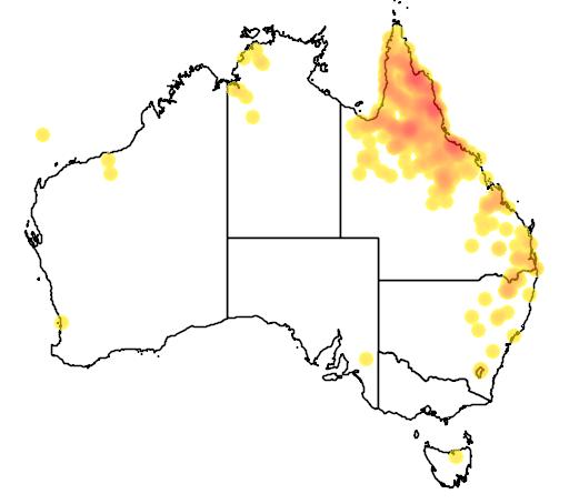 distribution map showing range of Poephila cincta in Australia