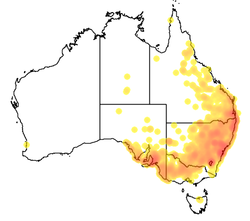distribution map showing range of Pogona barbata in Australia