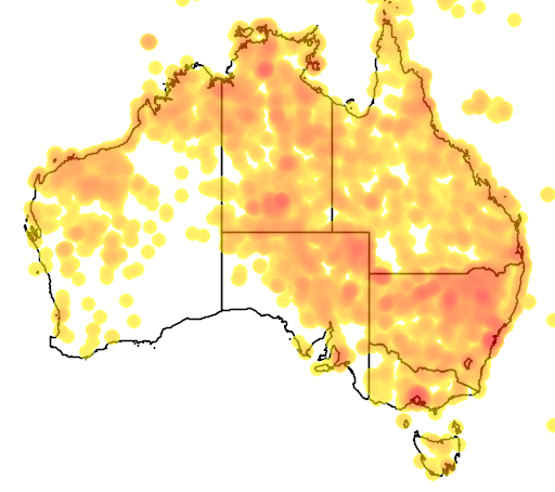 distribution map showing range of Portulaca oleraceae in Australia