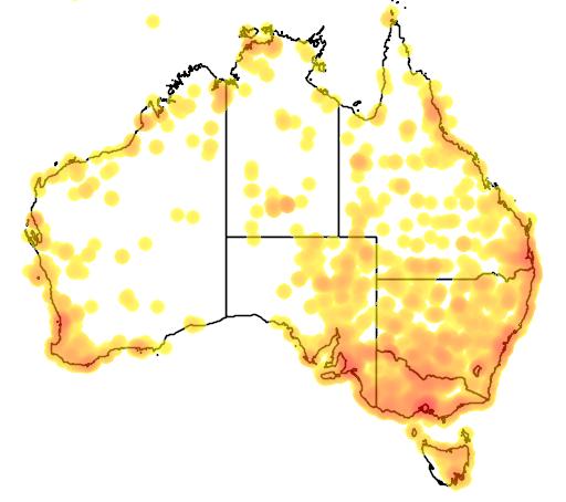 distribution map showing range of Porzana cinerea in Australia
