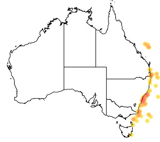 distribution map showing range of Procellaria parkinsoni in Australia