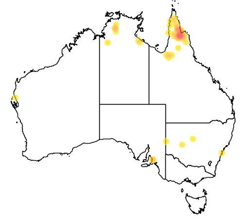 distribution map showing range of Psephotus chrysopterygius in Australia