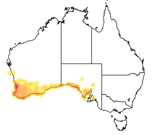 distribution map showing range of Pseudonaja affinis in Australia