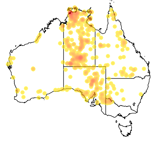 distribution map showing range of Pseudonaja nuchalis in Australia