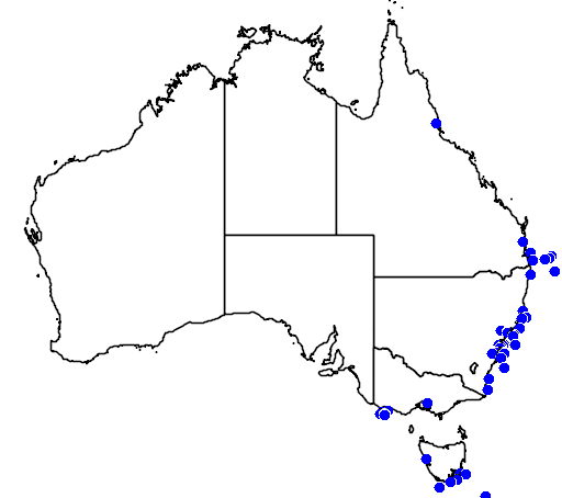 distribution map showing range of Pterodroma cookii in Australia