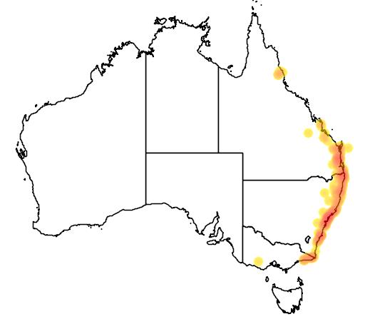distribution map showing range of Pterostylis baptistii in Australia