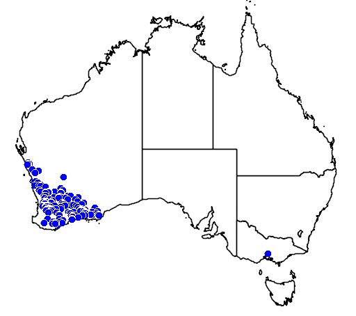 distribution map showing range of Pterostylis sargentii in Australia