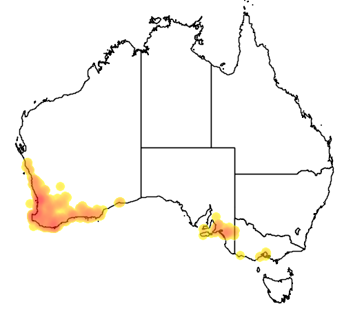 distribution map showing range of Pterostylis vittata in Australia