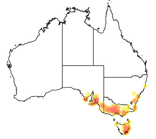 distribution map showing range of Pultenaea pedunculata in Australia