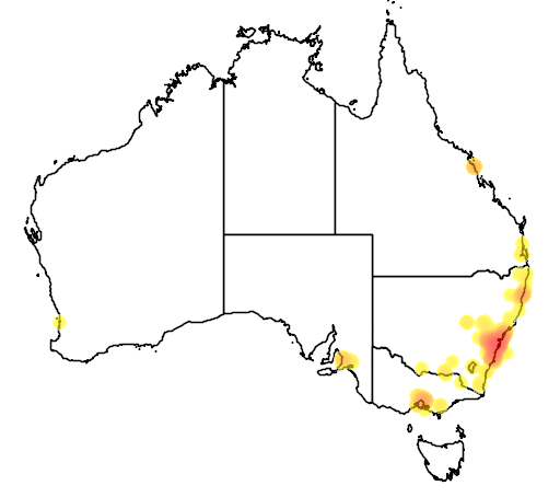 distribution map showing range of Pycnonotus jocosus in Australia
