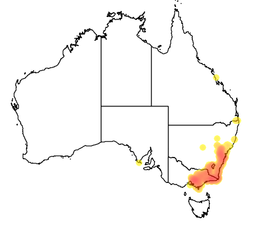 distribution map showing range of Pycnoptilus floccosus in Australia