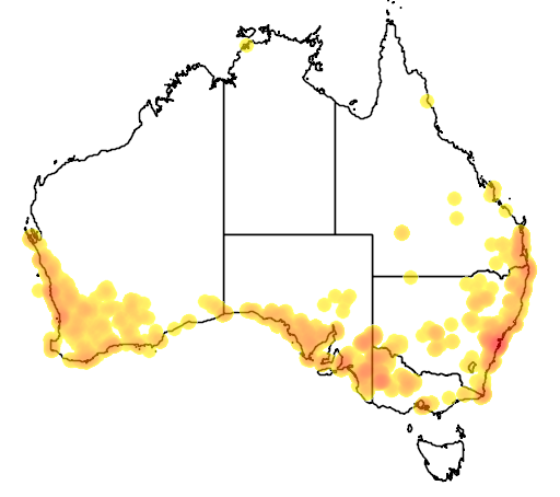 distribution map showing range of Pygopus lepidopodus in Australia