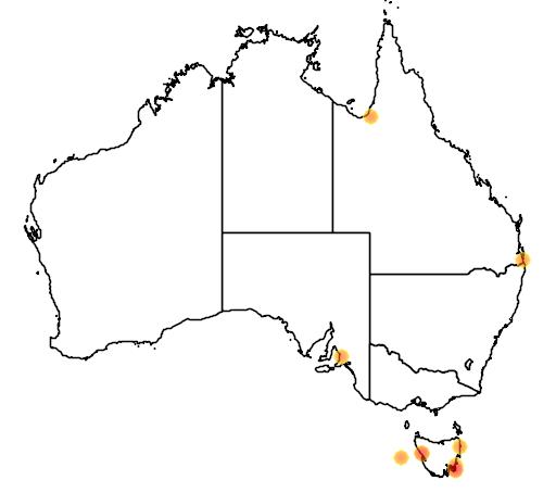 distribution map showing range of Pygoscelis papua in Australia