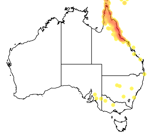 distribution map showing range of Ramsayornis modestus in Australia
