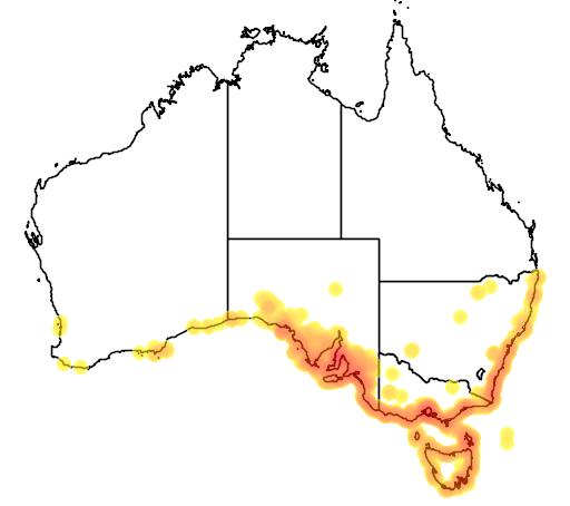 distribution map showing range of Rhagodia candolleana in Australia